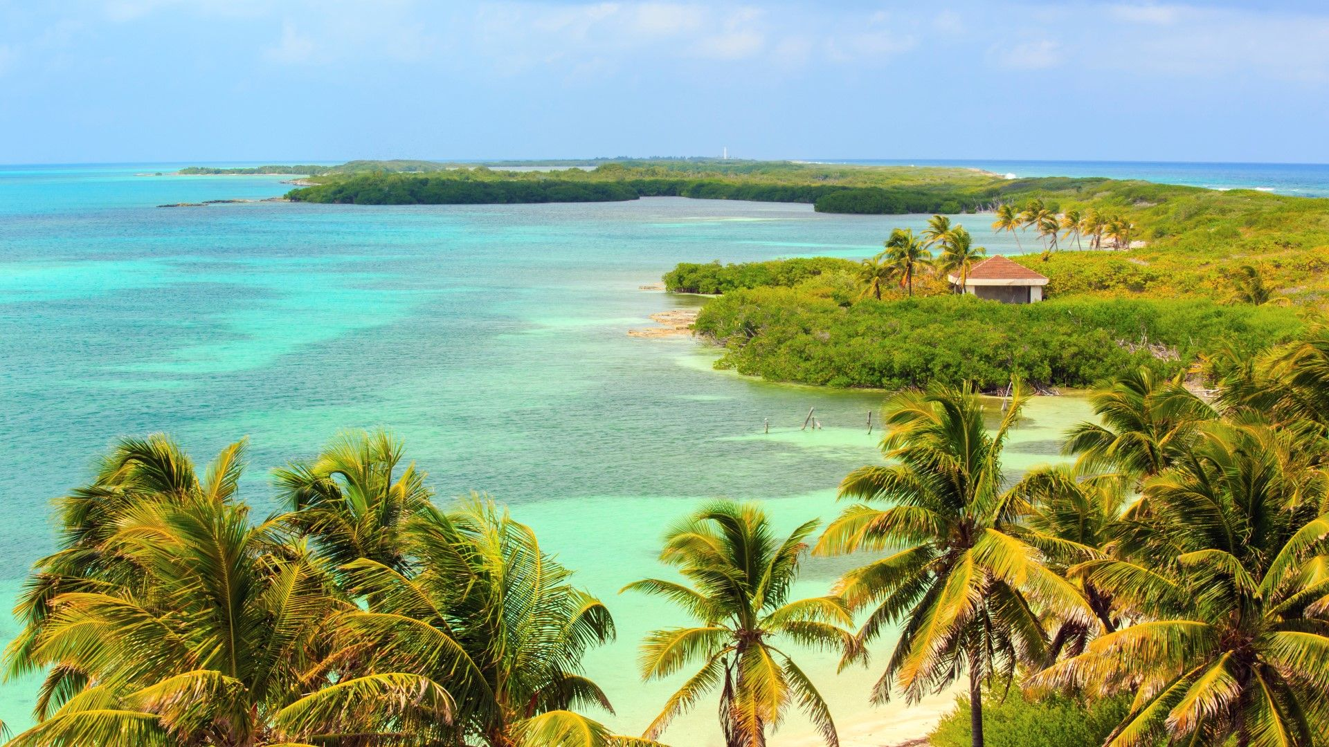 Tour: Isla Contoy - Isla Mujeres.