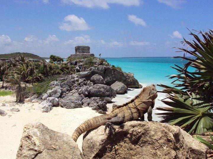 Tour: Tulum cobá. Ruinas playa Paraiso.