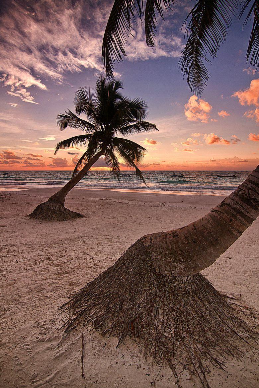 tulum-coba-cenote-y-playa-paraiso14