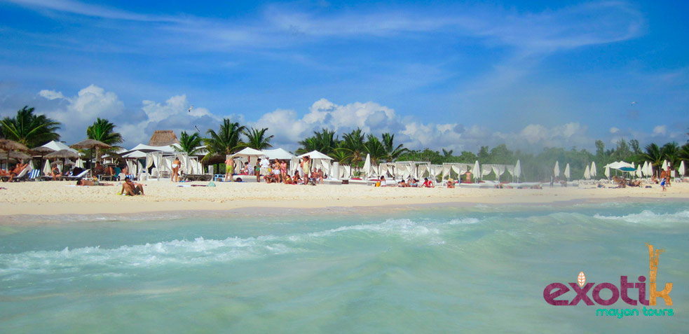 fiesta playa del carmen