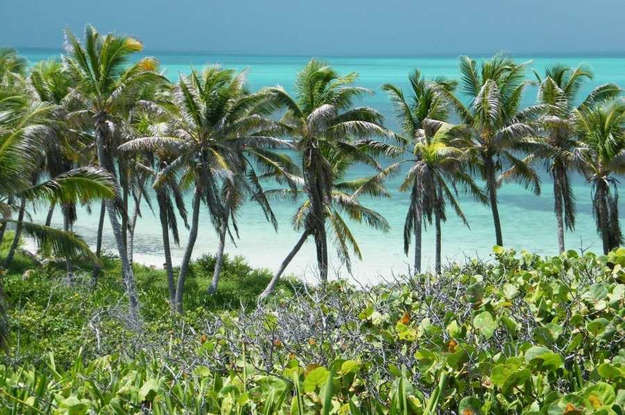 Vista de una de las playas de Isla Contoy.