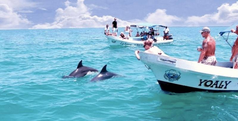 delfines-sian-kaan