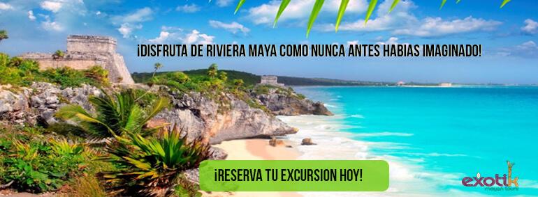 banner excursiones riviera maya
