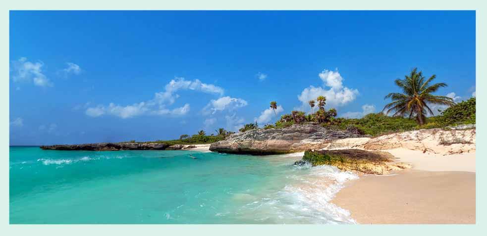disfruta de la naturaleza playa del carmen