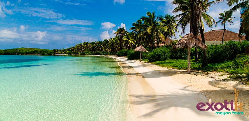 isla contoy playa