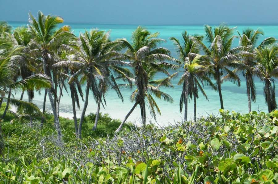 rsz_paradise_island_isla_contoy