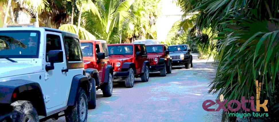 Una de las mejores actividades en Riviera Maya si vas en pareja, solo o con amigos es visitar la Reserva natural de Sian Ka'an.